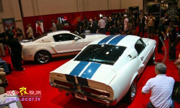 兄弟集会 福特Shelby GT500新老兄弟秀高清图片